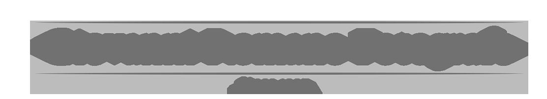 logo2021grigiopng